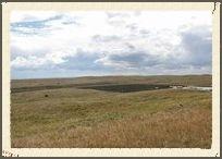 20141102_aa_grasslands_mrr_hr.jpg