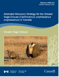 20141231_rp_amended_rs_sage_grouse_e_final_cover.png