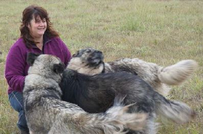 20150600_ranchers_wolves_pic.JPG