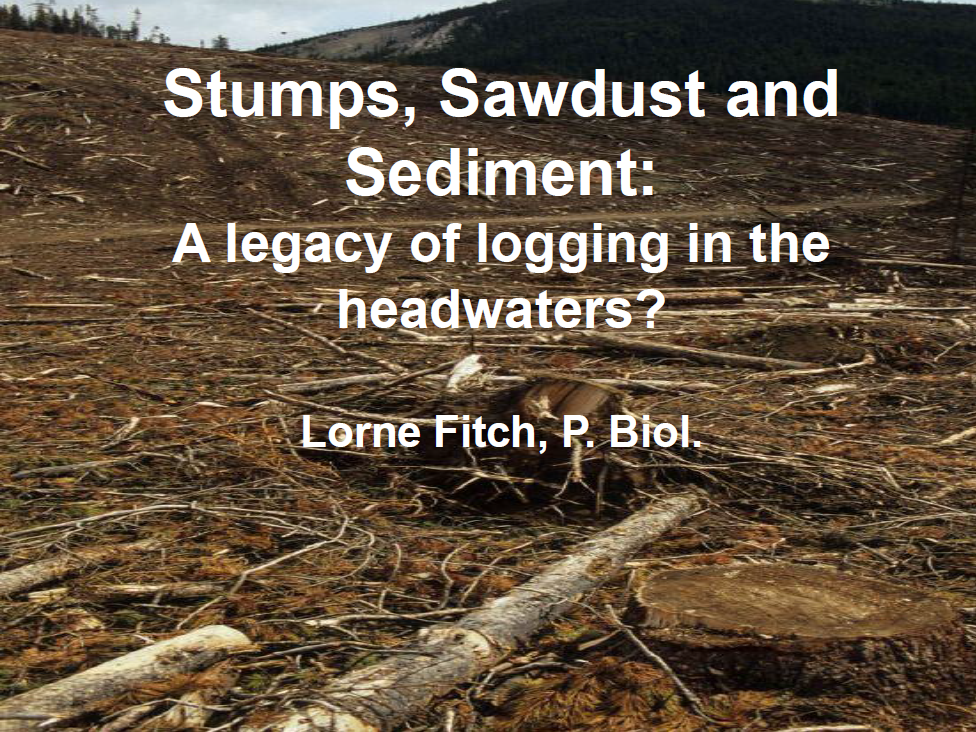 Presentation: Stumps, Sawdust and Sediment : A Legacy of Logging in the Headwaters