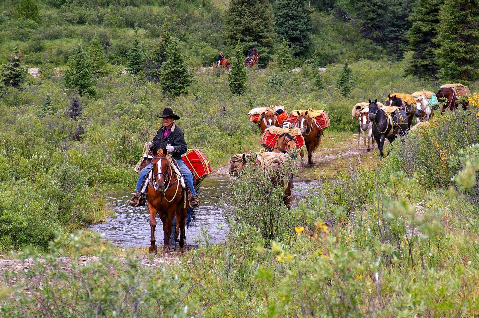 Willmore Wilderness - Alberta Wilderness Association
