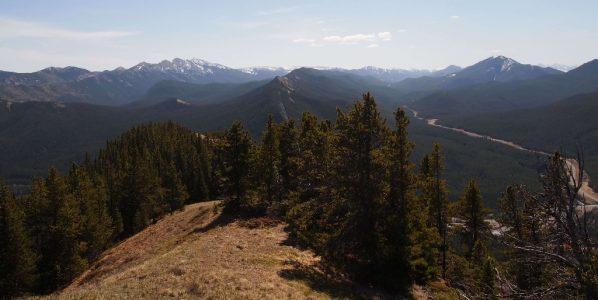 plateau mountain alberta wilderness association