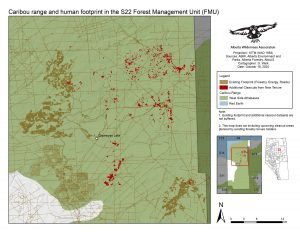 Figure 1. New logging tenure allocation announced October 8th, 2020 in critical habitat of West Side of Athabasca River threatened woodland caribou. Map Source: Alberta Wilderness Association.