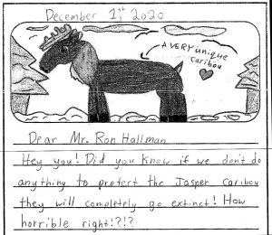 One of thirty letters by Grade 4 students of Hugh A. Bennett School, Calgary, to Parks Canada's CEO, copied to AWA.