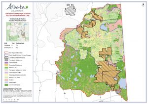Alberta has agreed to establish a minimum of 65% undisturbed habitat in Cold Lake caribou range. Only 8% (the bits of dark green) is undisturbed now. Map: Government of Alberta, January 2021.