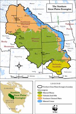 The Northern Great Plains Ecoregion - credit: WWF