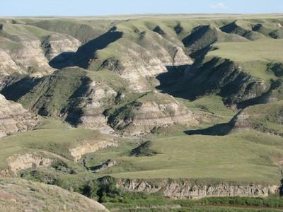 Prairie Coulees, Suffield NWA